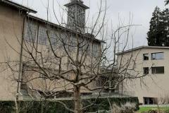 Pfarreibaum im Winter